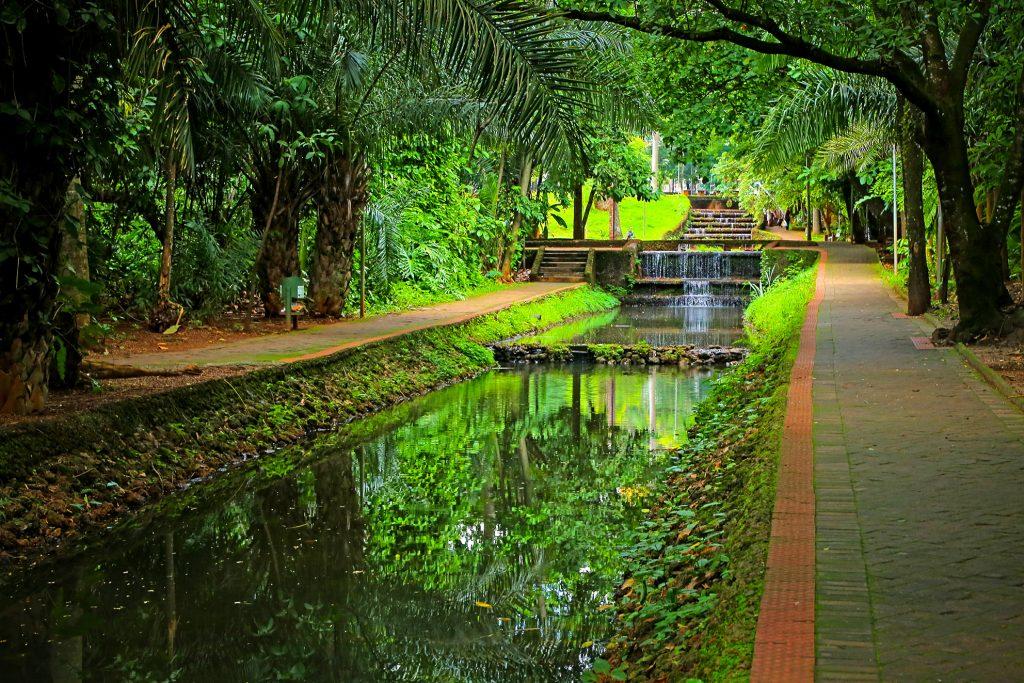 Bosque dos Buritis ( Jackson Rodrigues - Prefeitura de Goiânia)
