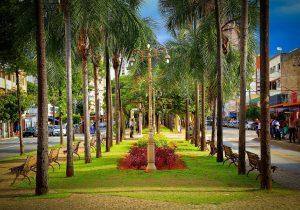 Avenida Goiás